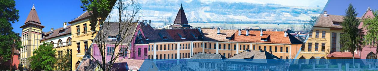"Liceul Vocaţional Pedagogic ""N. Bolcaş"", Beiuş"